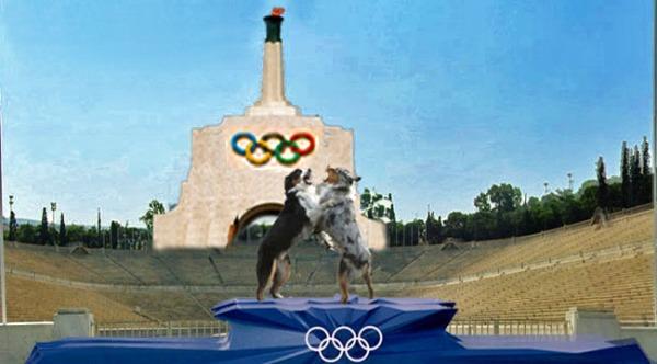 OlympiadGaWy2_650x360