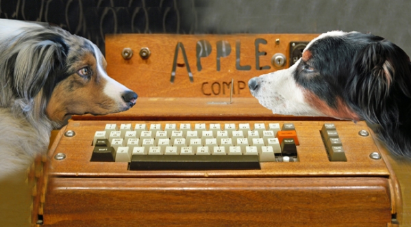 AppleOne.GaWy_650x360