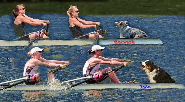 LUCERNE, SWITZERLAND - JULY 13: (L-R) Kristin Hedstrom and Kathleen Bertko of USA team row at round of semifinal A/B 2 in the Women's Double Sculls Lightweight during day 2 of the Samsung World Cup III on Lucerne Rotsee on July 13, 2013 in Lucerne, Switzerland. (Photo by Pier Marco Tacca/Getty Images)