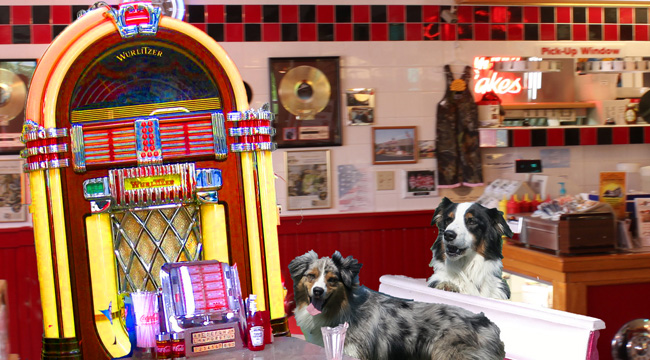 Jukebox.GaWy3_650x360