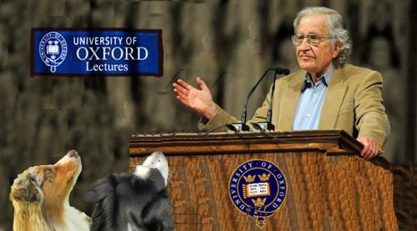 Chomsky.GaWy_650x360_edited-1
