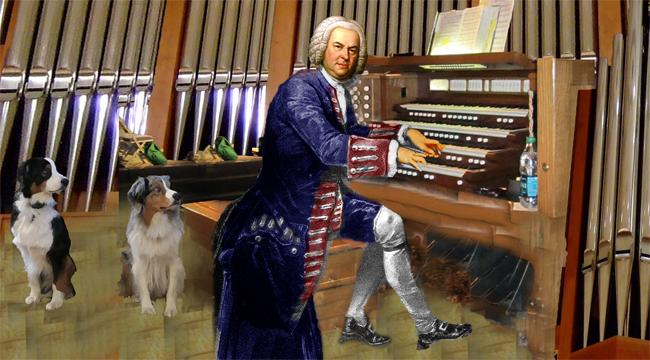 Bach.GaWy_650x360