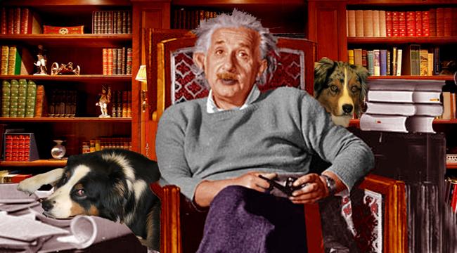 Einstein.GaWy_650x360