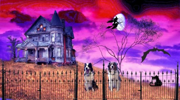 halloween-gawy_650x360