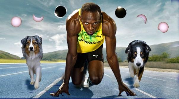 Bolt.Eclip.GaWy_650x360