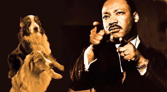 MLKing.GaWy_650x360