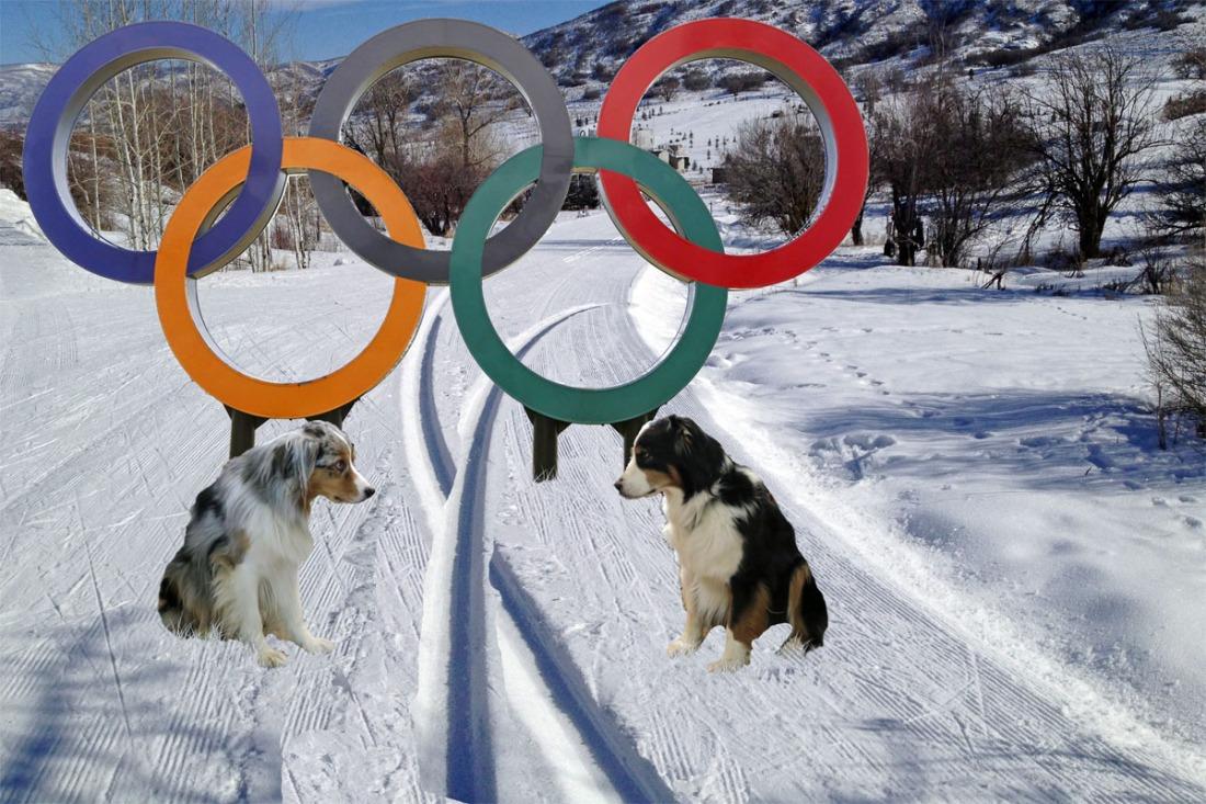 OlympicCrossSki.GaWy_1200x800