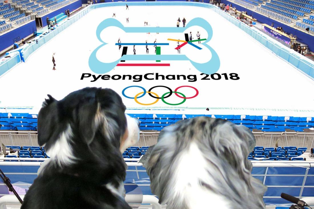 OlympicFigureSkate_1200x800