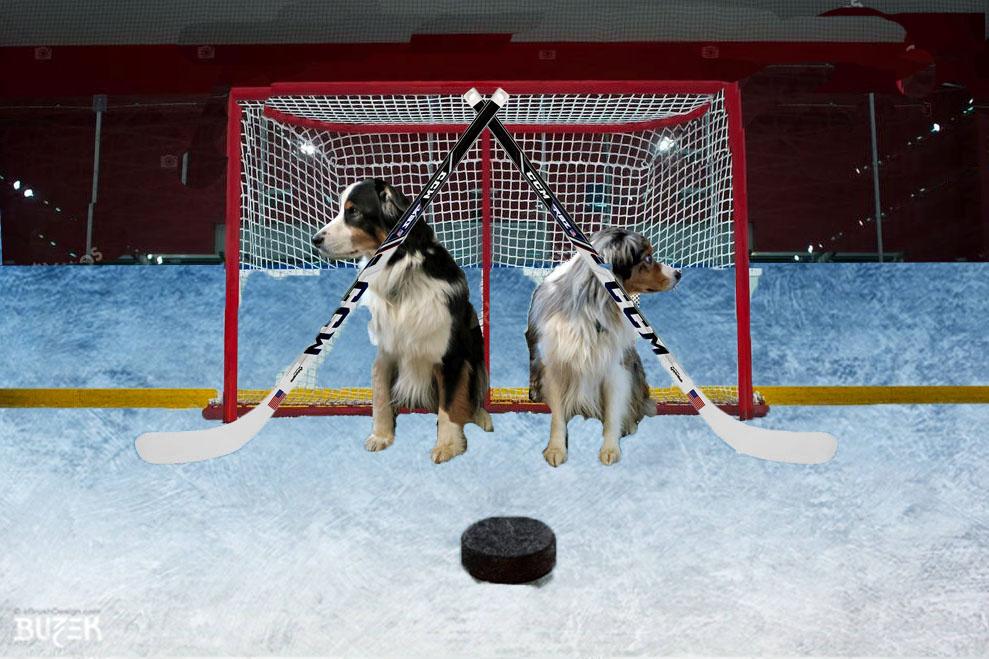 OlympicHockey.GaWy2