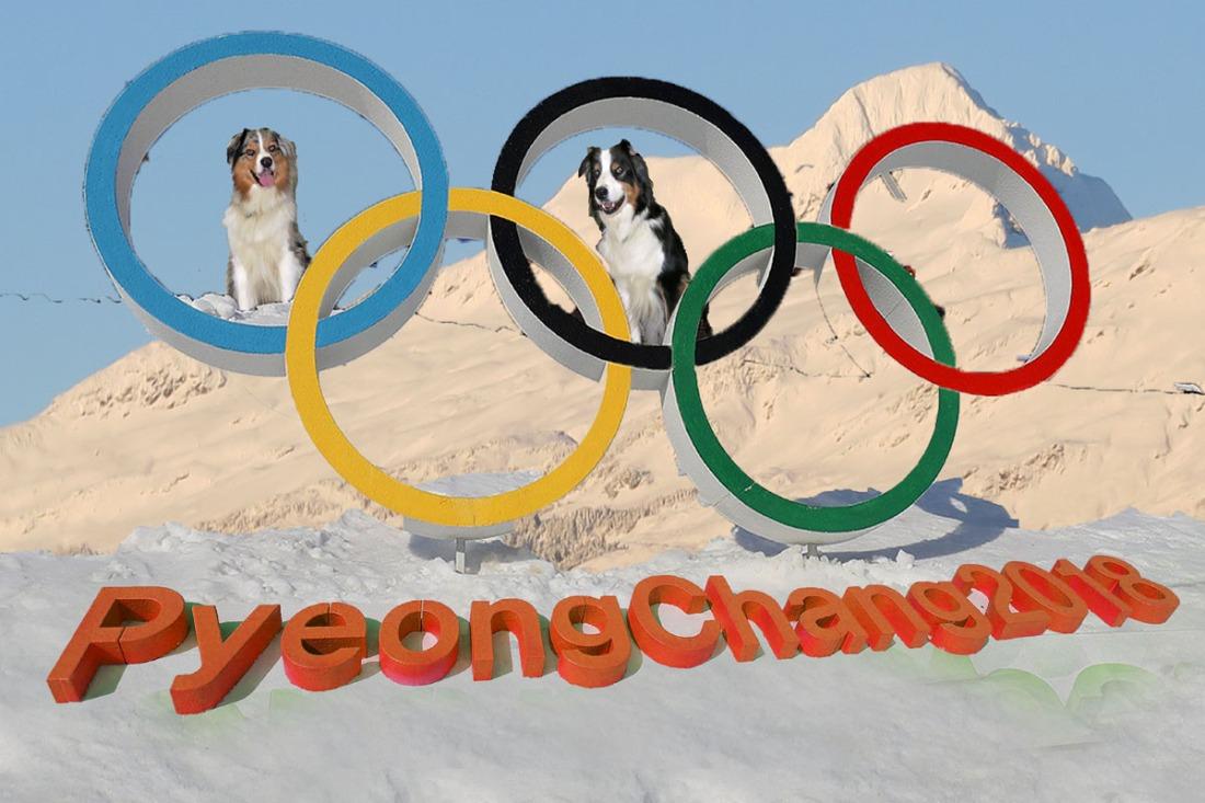 OlympicRings.GaWy3_1200x800