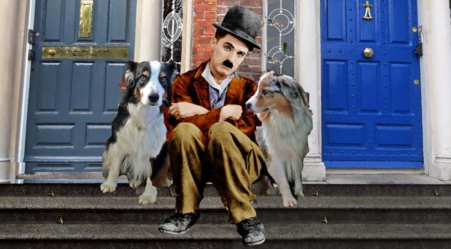 Chaplin.GaWy2b_650x360