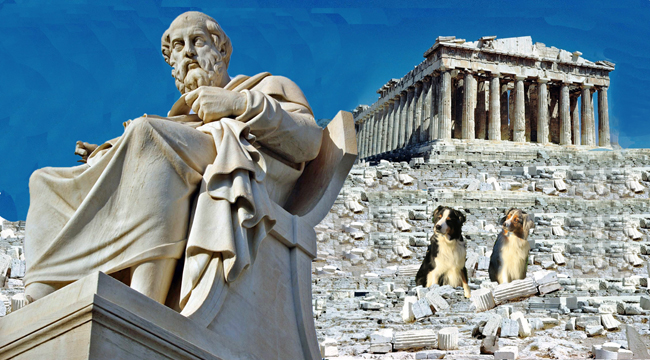 Plato.GaWy_650x360