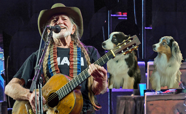 WillieNelson.GaWy.2019_650X400