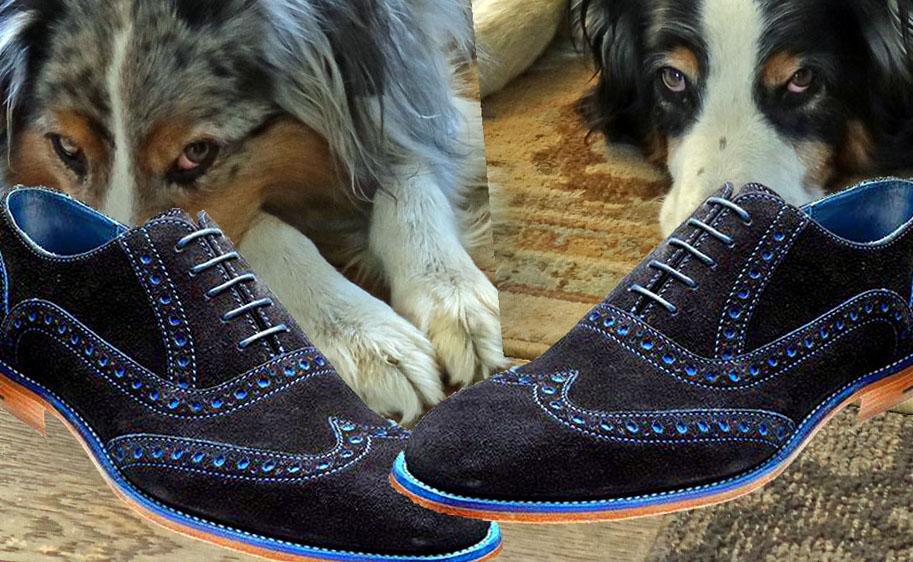 BlueShoes.GaWy2