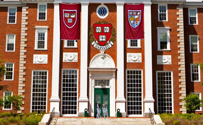 Harvard.GaWy_650x400